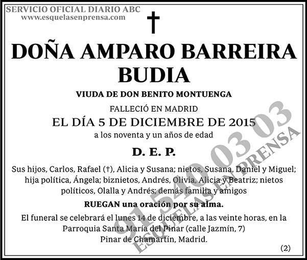 Amparo Barreira Budia